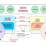 Data Science Engineer – Who, What, & Why?